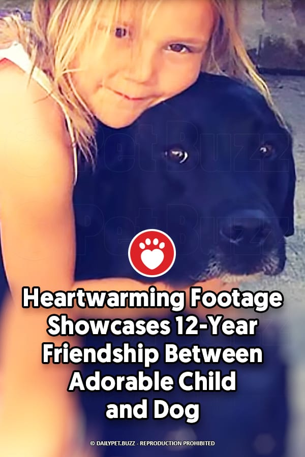 Heartwarming Footage Showcases 12-Year Friendship Between Adorable Child and Dog