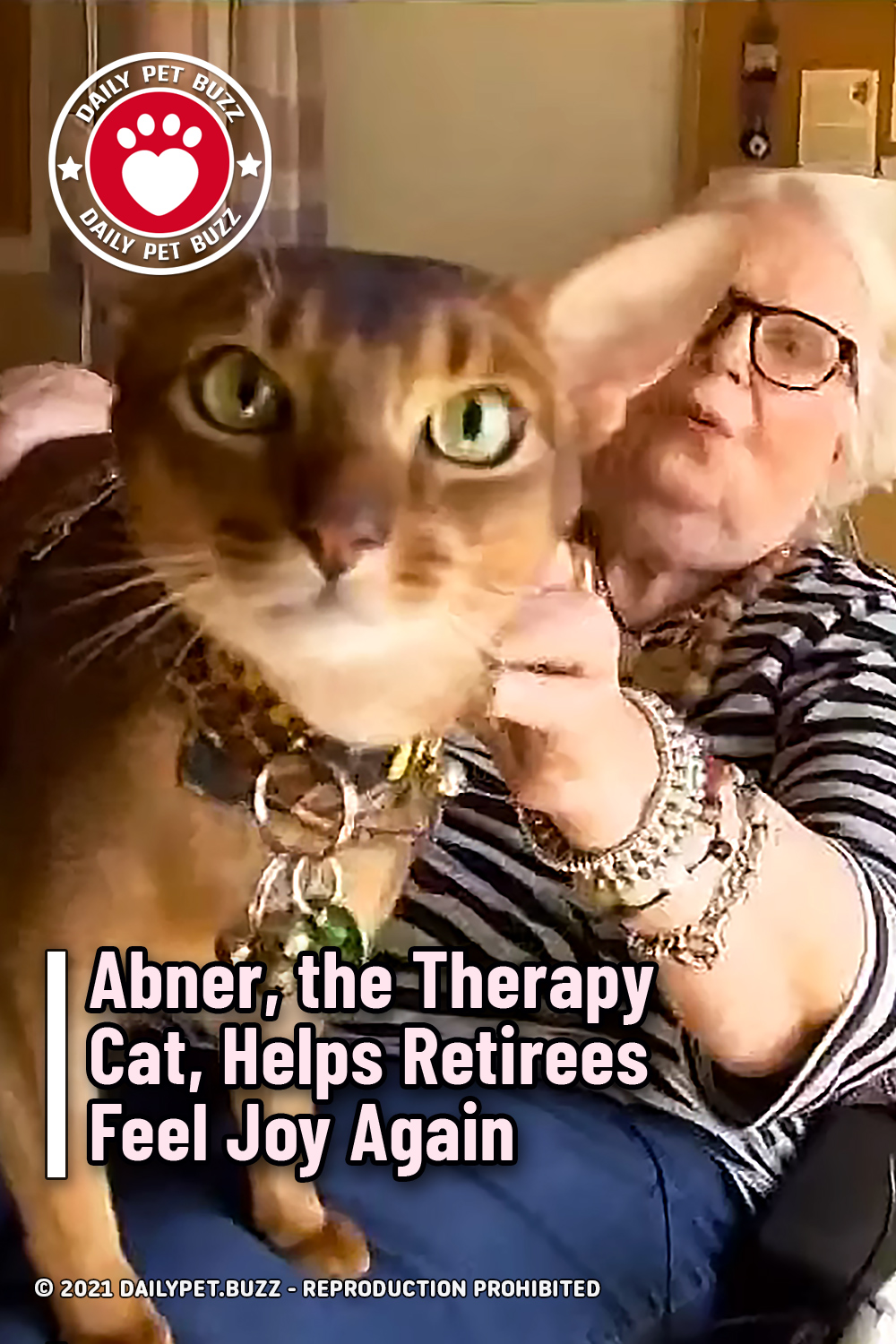 Abner, the Therapy Cat, Helps Retirees Feel Joy Again