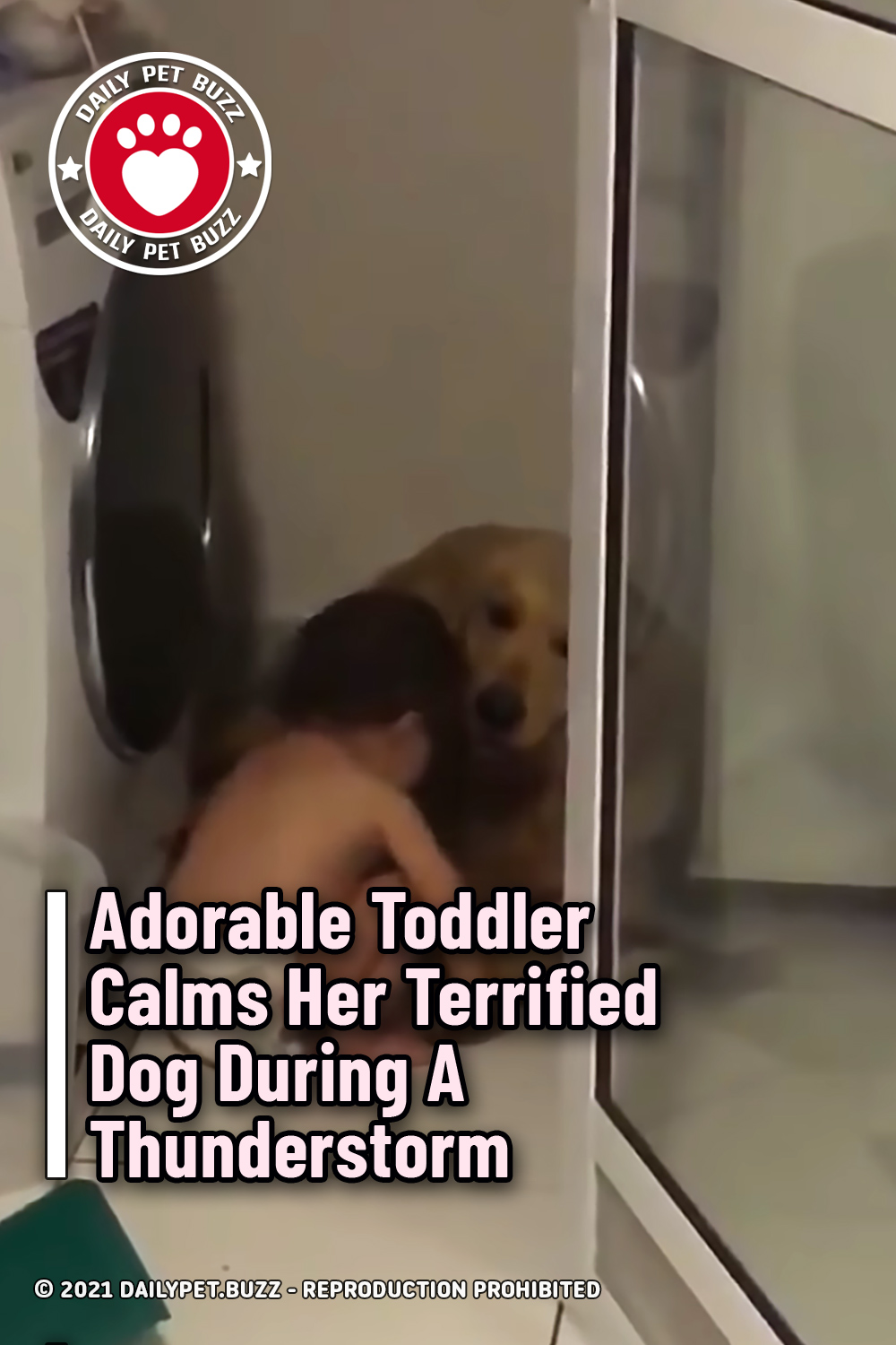 Adorable Toddler Calms Her Terrified Dog During A Thunderstorm