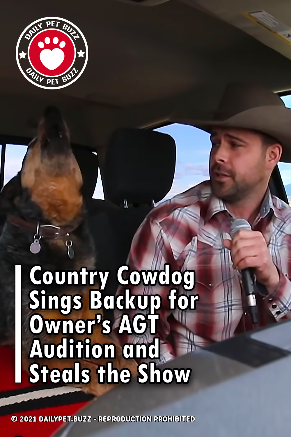 Country Cowdog Sings Backup for Owner's AGT Audition and Steals the Show