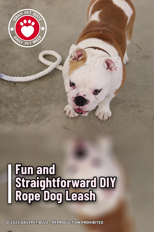 Fun and Straightforward DIY Rope Dog Leash