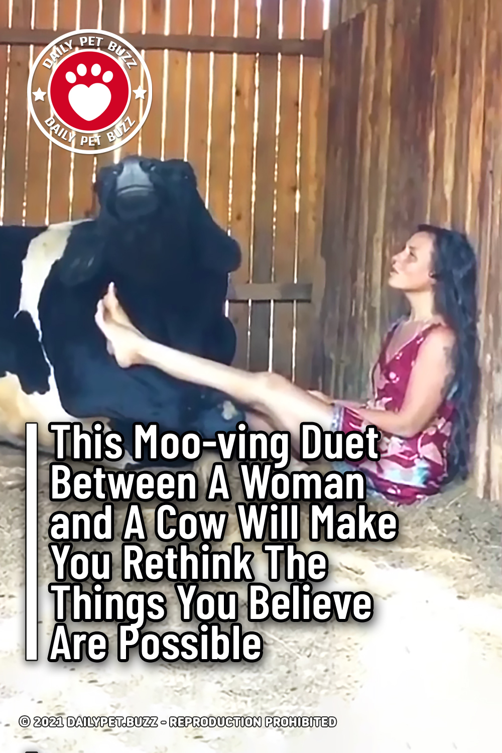This Moo-ving Duet Between A Woman and A Cow Will Make You Rethink The Things You Believe Are Possible