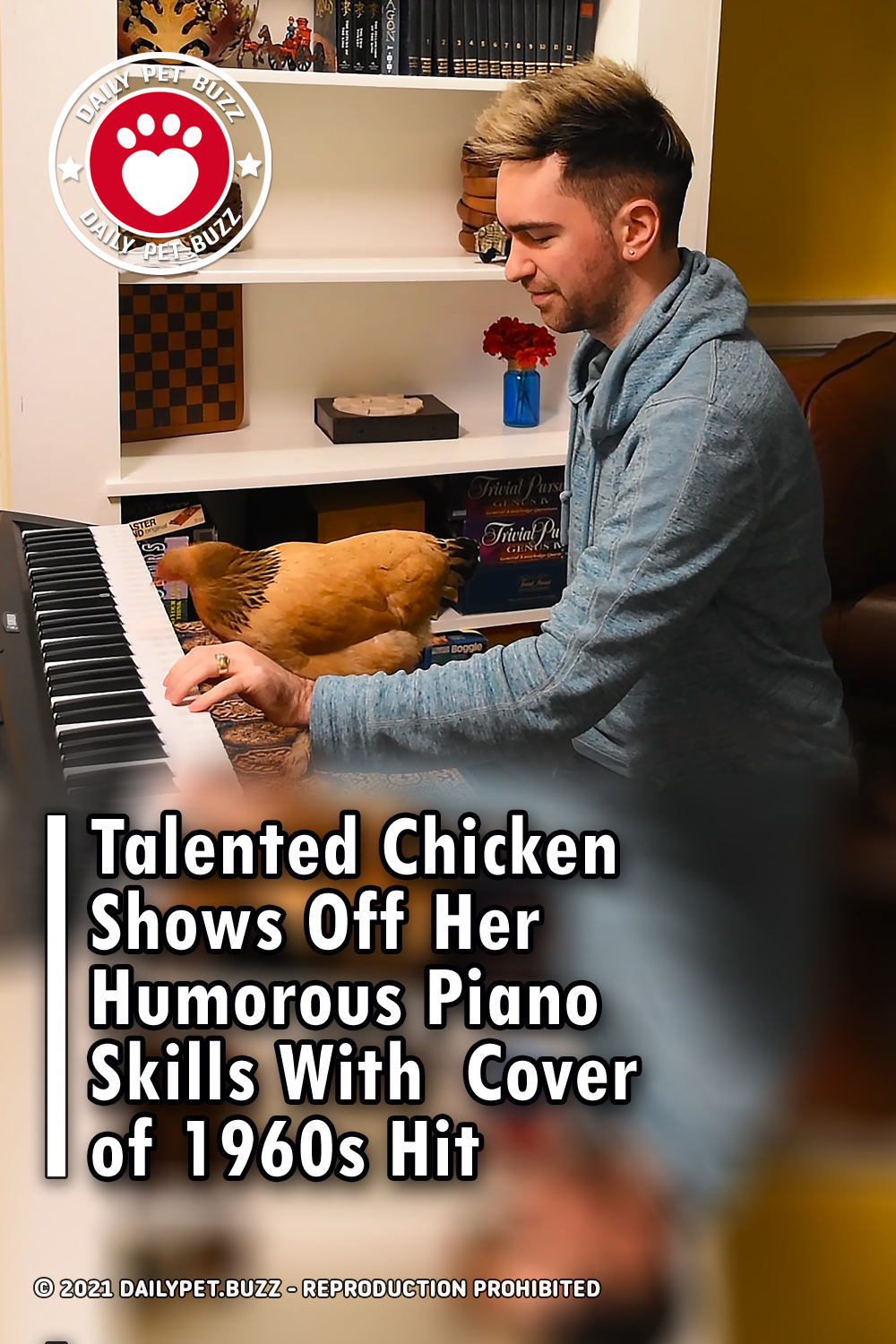 Talented Chicken Shows Off Her Humorous Piano Skills With  Cover of 1960s Hit