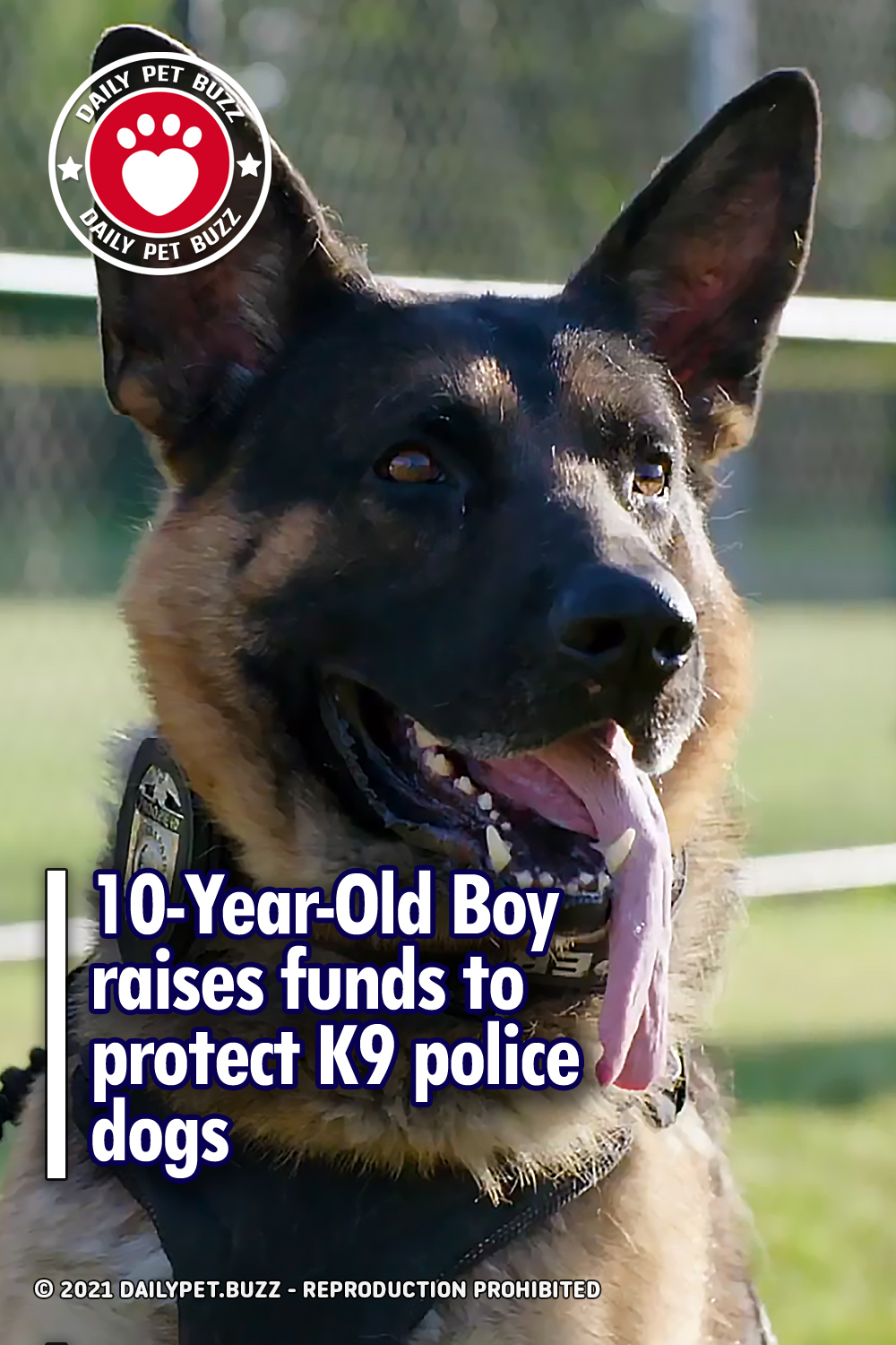 10-Year-Old Boy raises funds to protect K9 police dogs