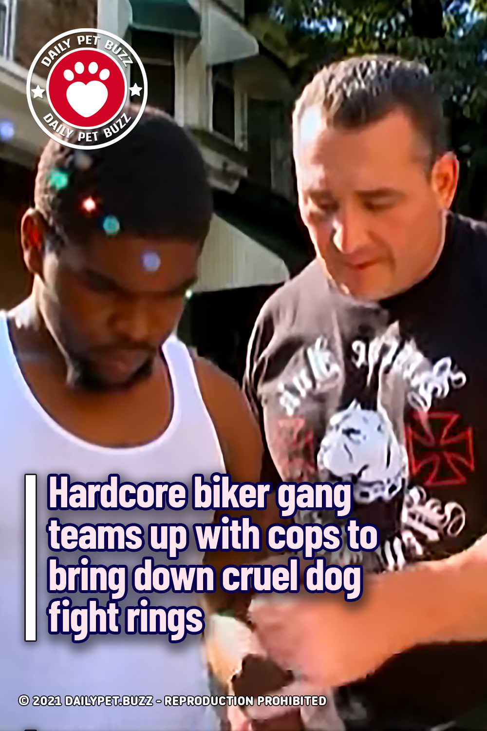 Hardcore biker gang teams up with cops to bring down cruel dog fight rings