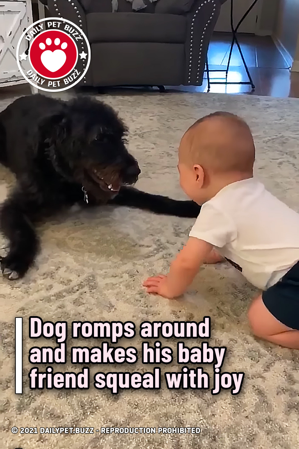 Dog romps around and makes his baby friend squeal with joy