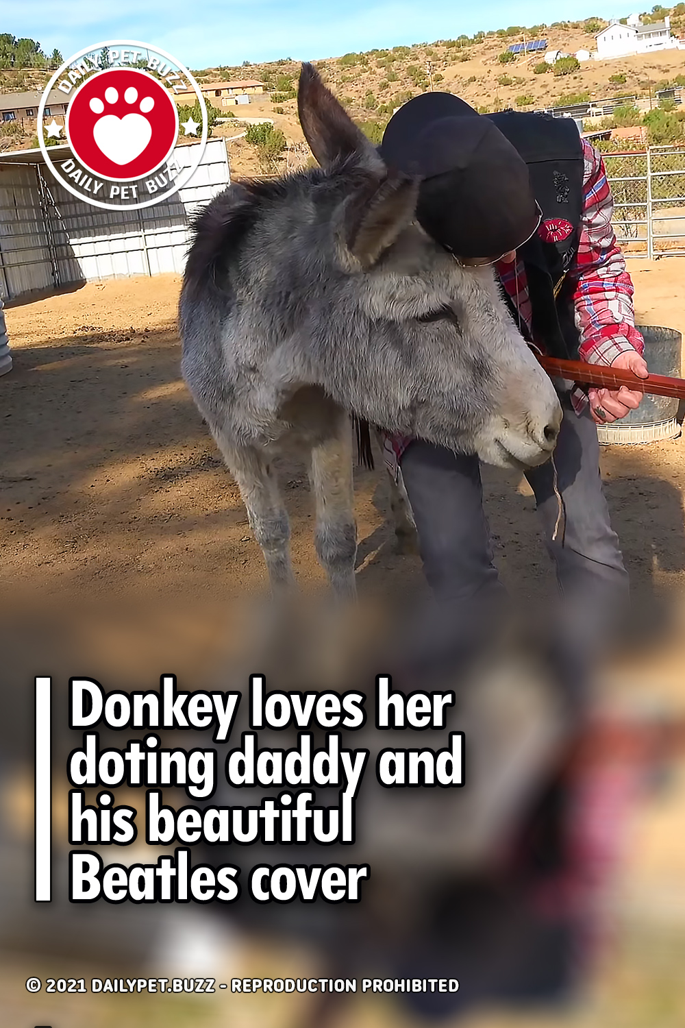 Donkey loves her doting daddy and his beautiful Beatles cover