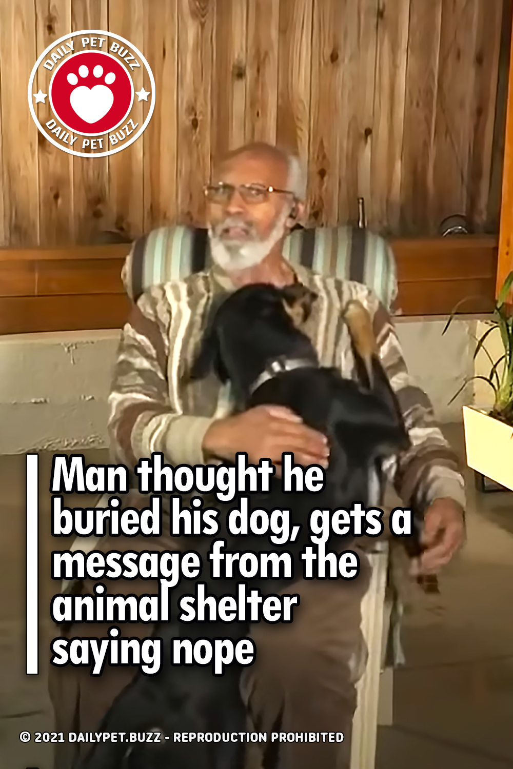 Man thought he buried his dog, gets a message from the animal shelter saying nope