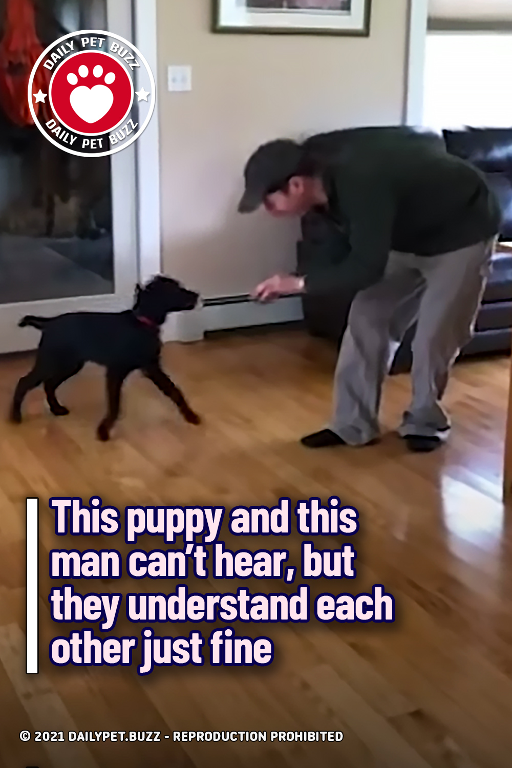 This puppy and this man can't hear, but they understand each other just fine