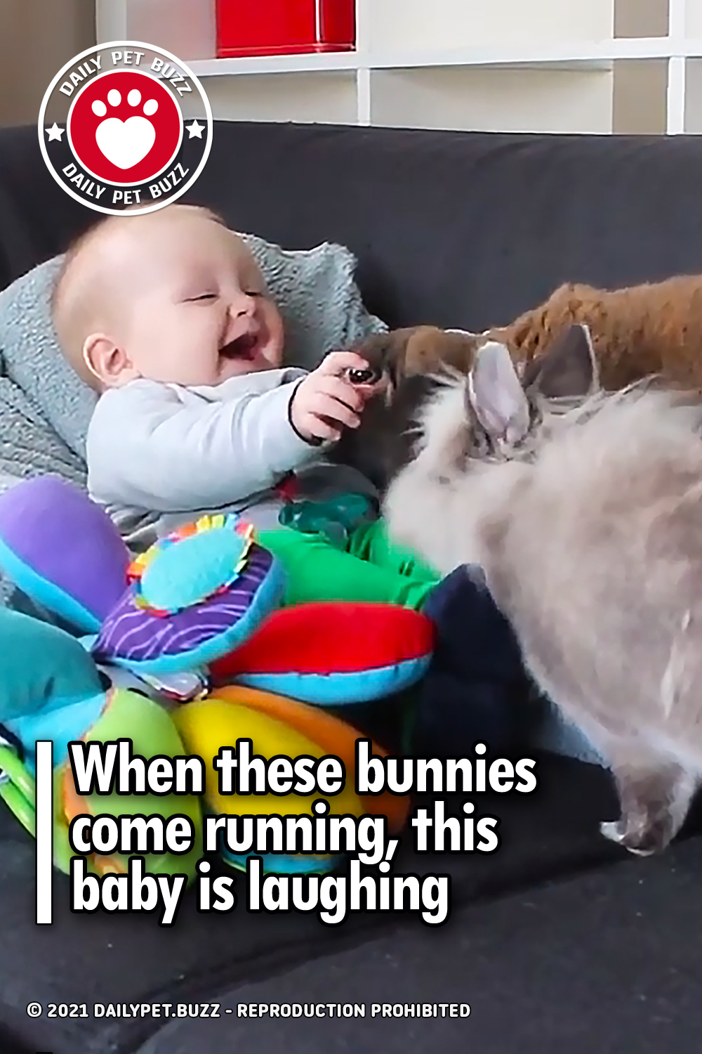 When these bunnies come running, this baby is laughing