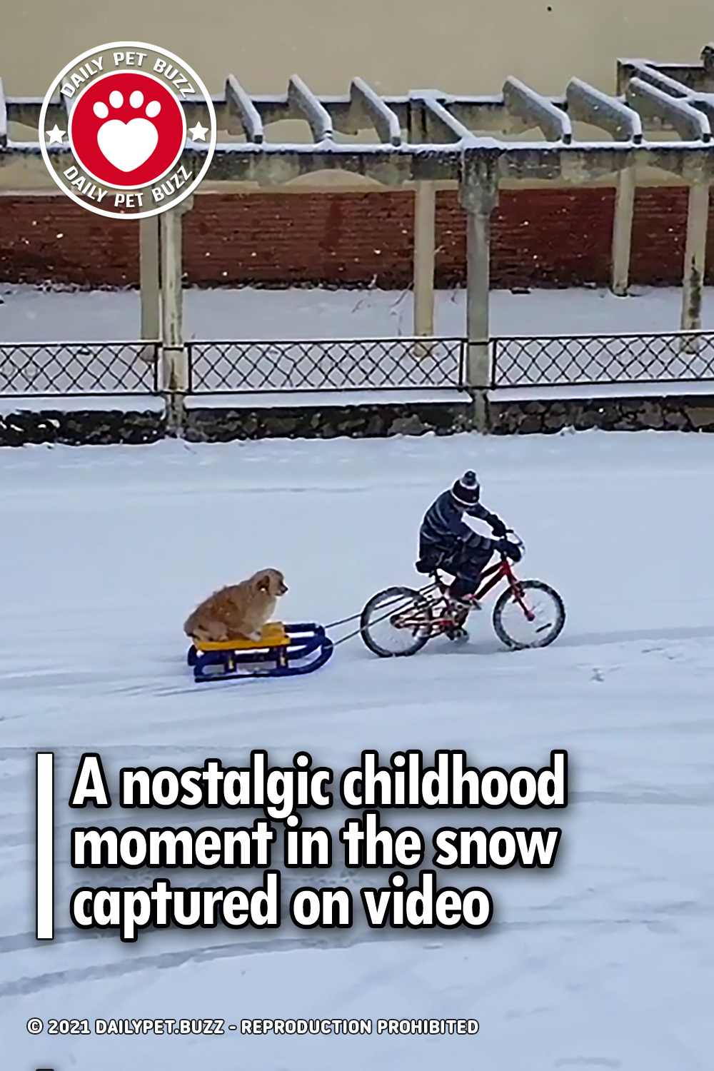A nostalgic childhood moment in the snow captured on video