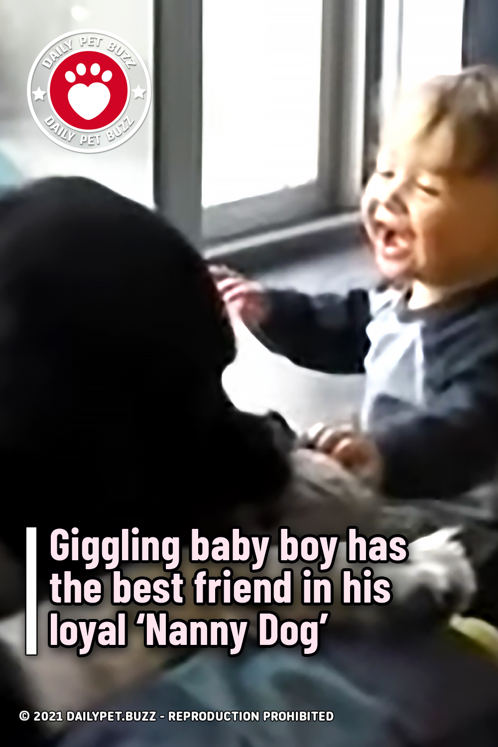 Giggling baby boy has the best friend in his loyal 'Nanny Dog'