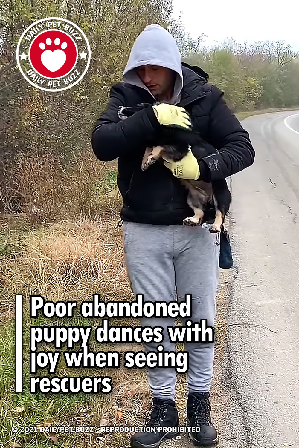 Poor abandoned puppy dances with joy when seeing rescuers