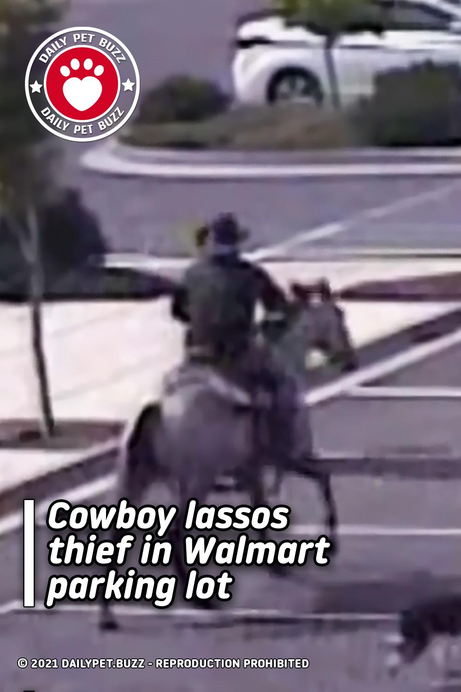 Cowboy lassos thief in Walmart parking lot