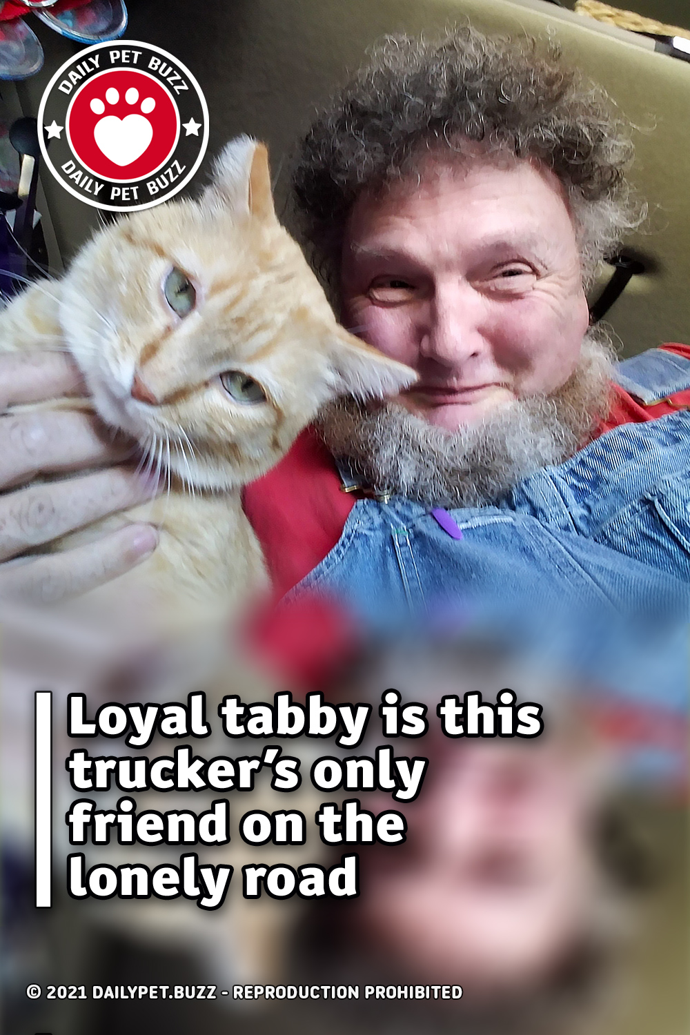 Loyal tabby is this trucker's only friend on the lonely road