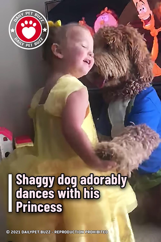 Shaggy dog adorably dances with his Princess