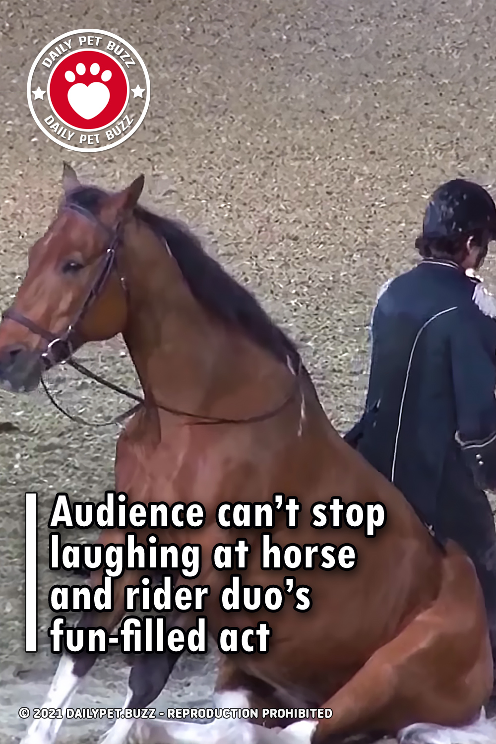 Audience can't stop laughing at horse and rider duo's fun-filled act
