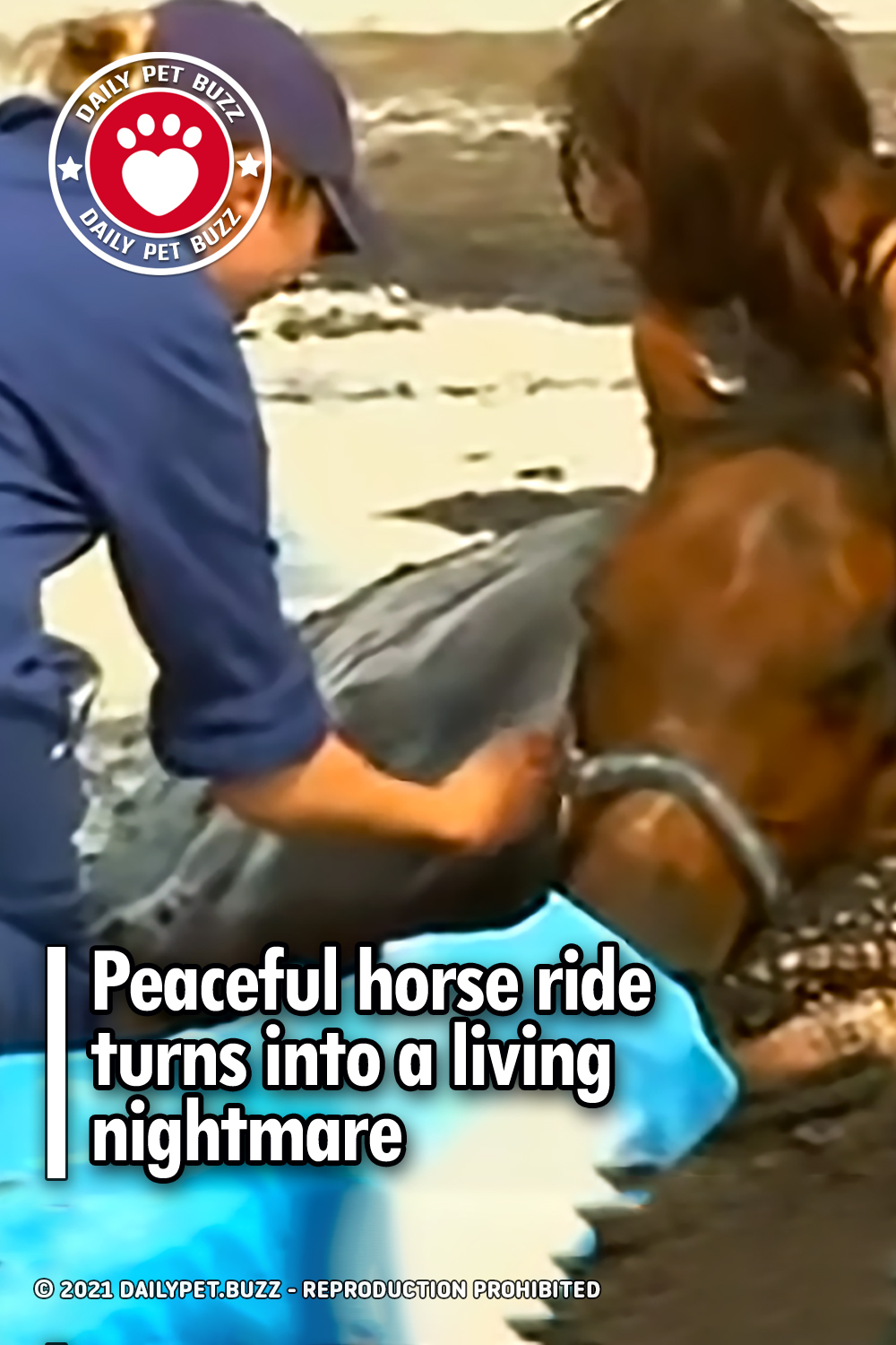 Peaceful horse ride turns into a living nightmare