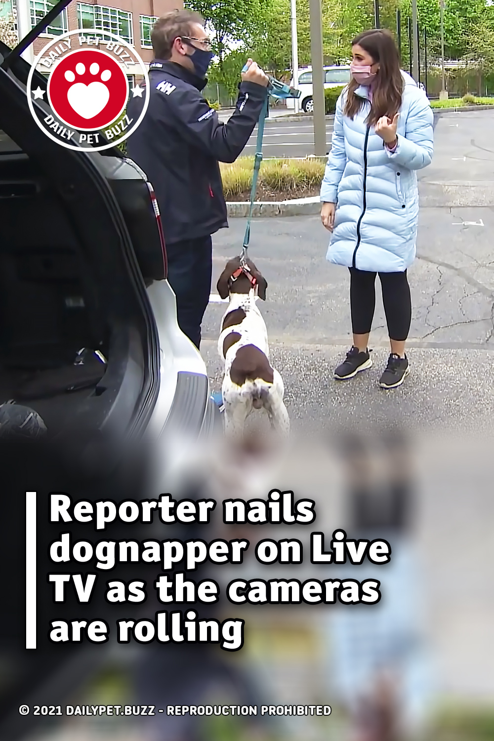 Reporter nails dognapper on Live TV as the cameras are rolling