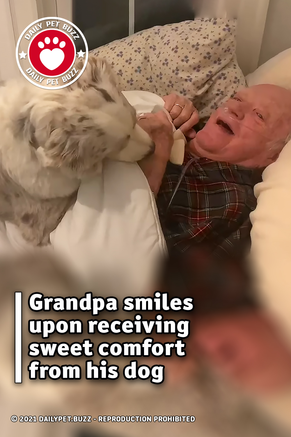 Grandpa smiles upon receiving sweet comfort from his dog