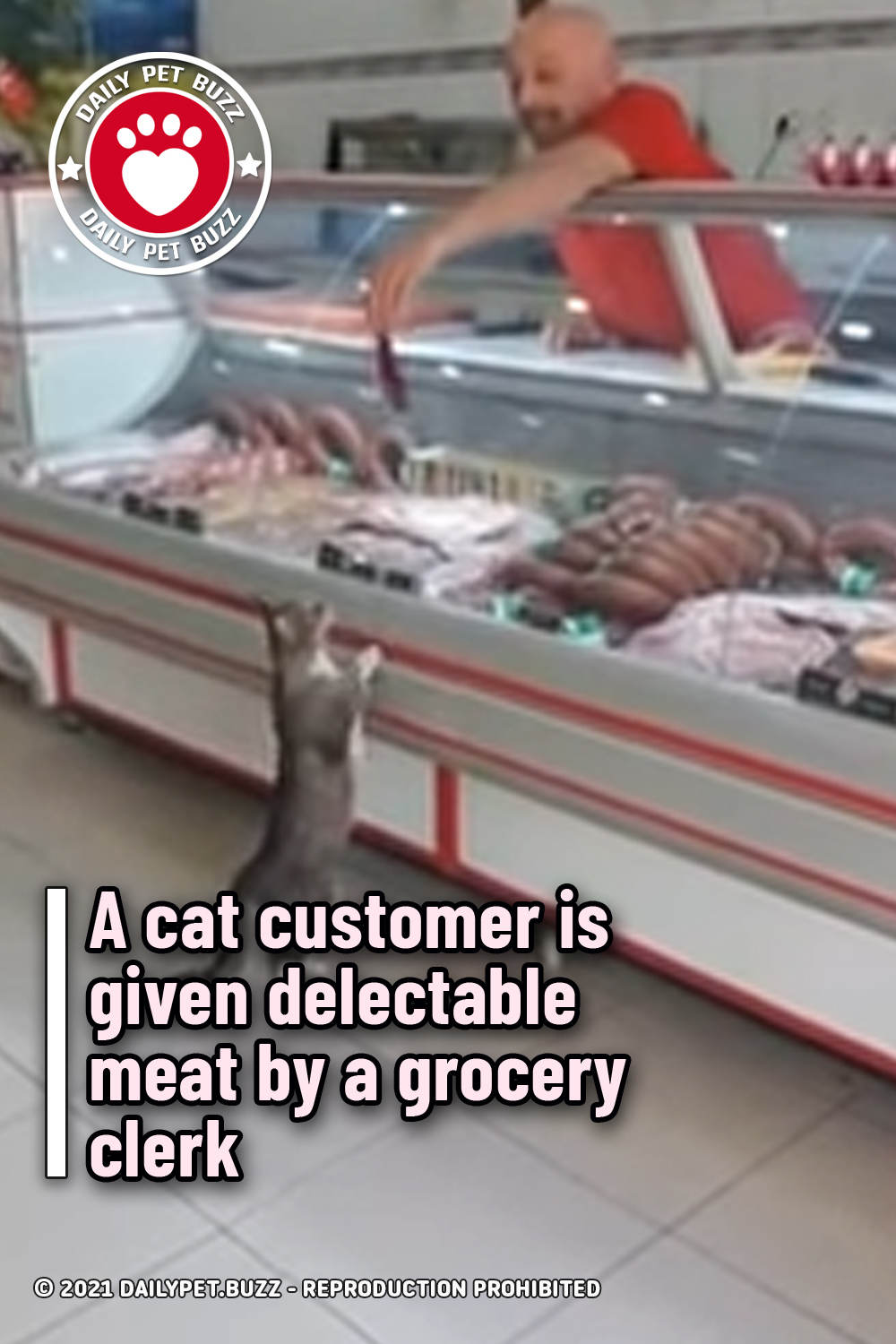 A cat customer is given delectable meat by a grocery clerk