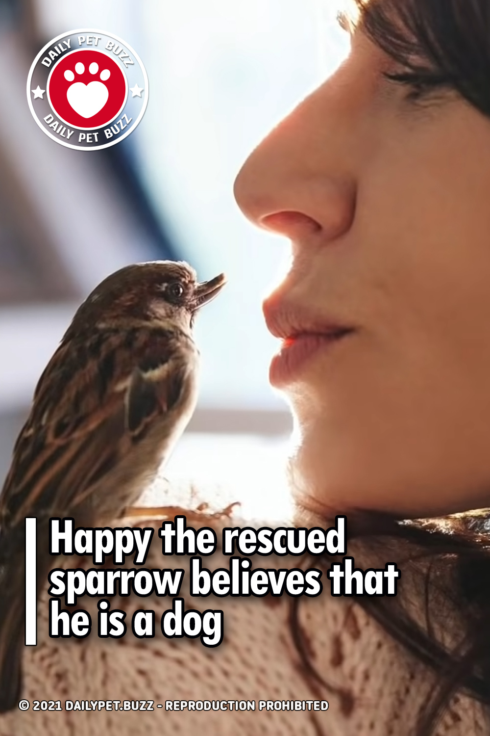Happy the rescued sparrow believes that he is a dog