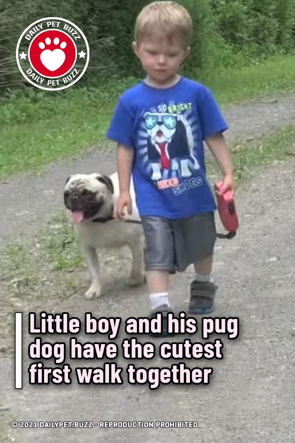 Little boy and his pug dog have the cutest first walk together
