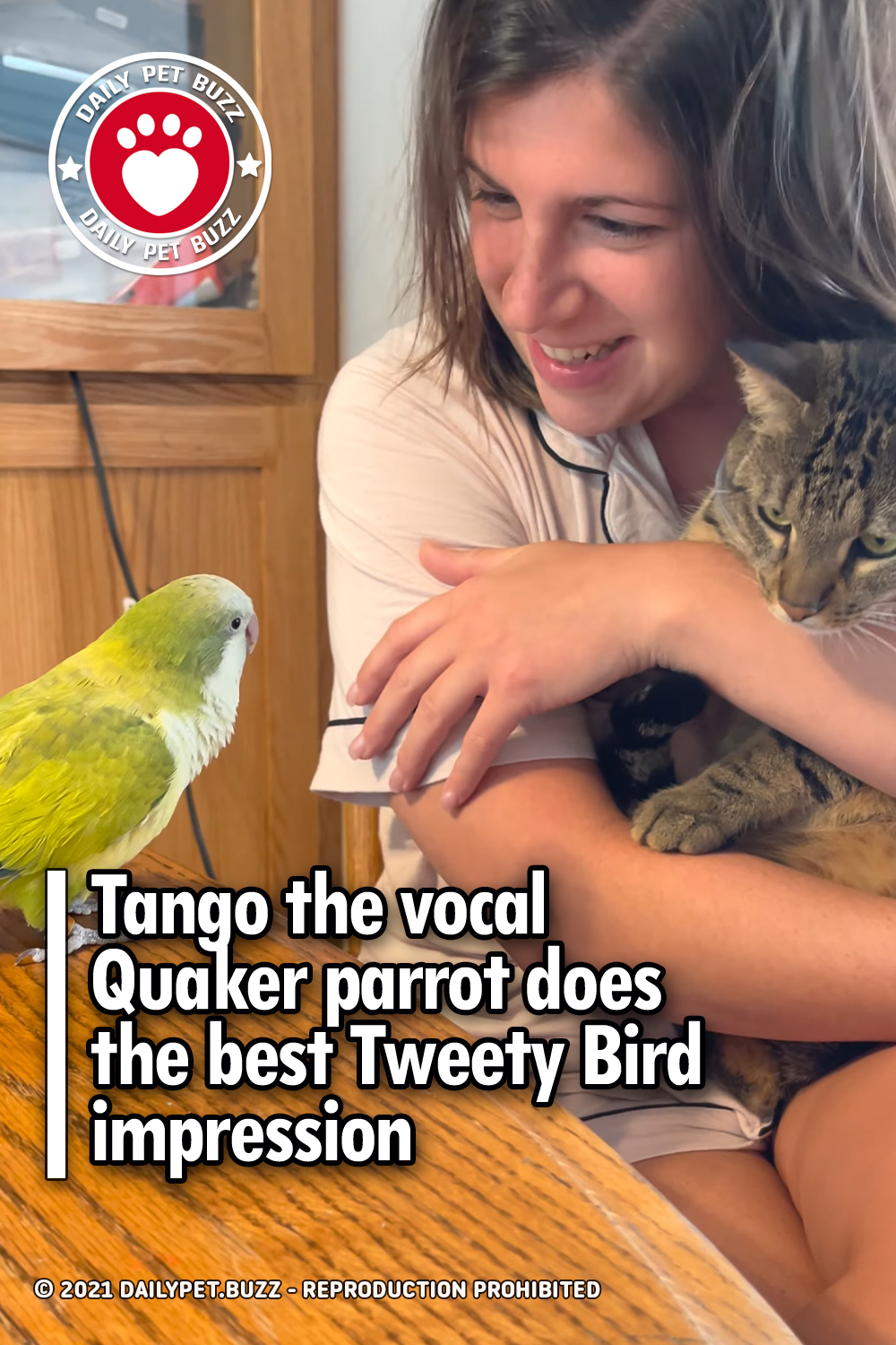 Tango the vocal Quaker parrot does the best Tweety Bird impression
