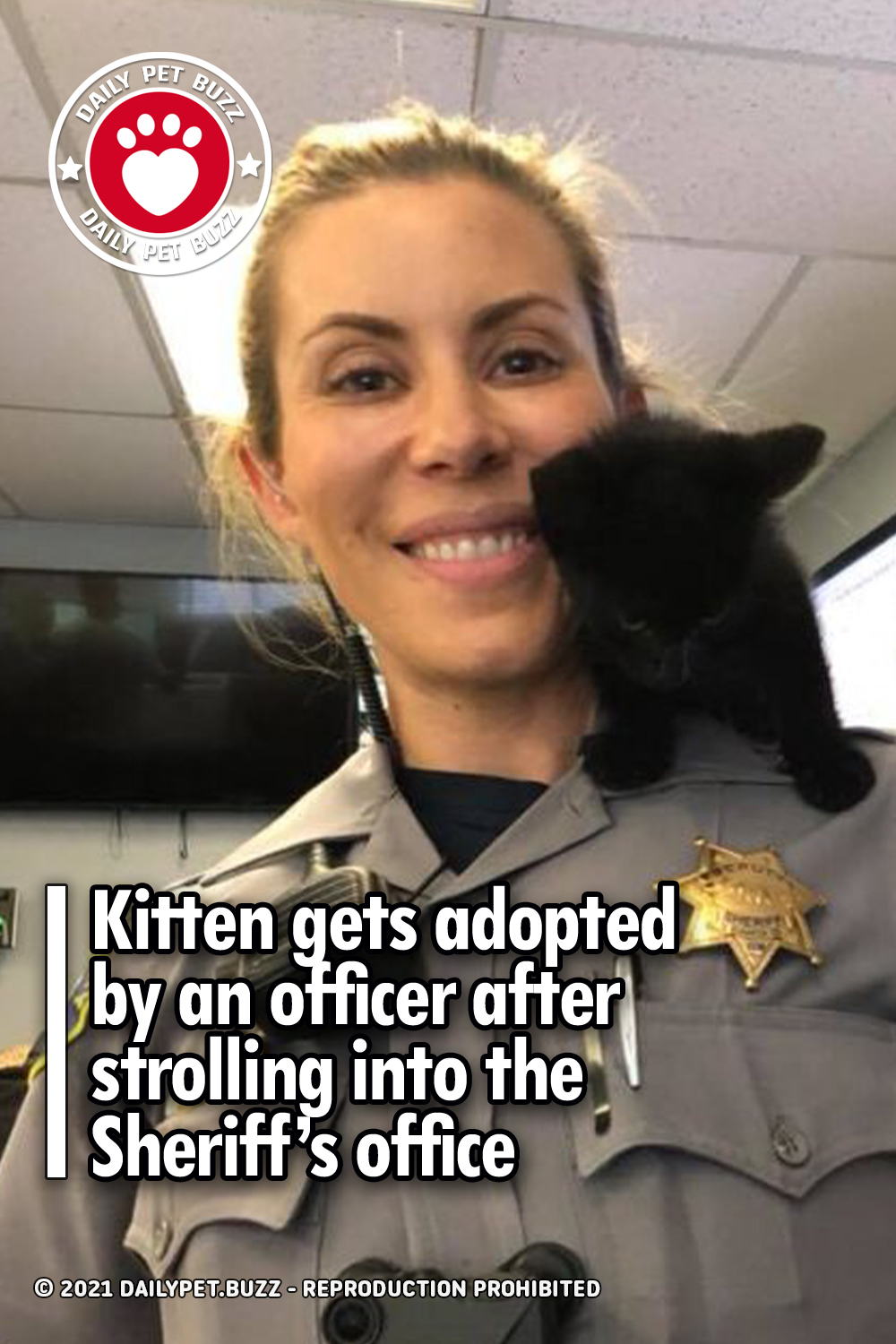 Kitten gets adopted by an officer after strolling into the Sheriff's office