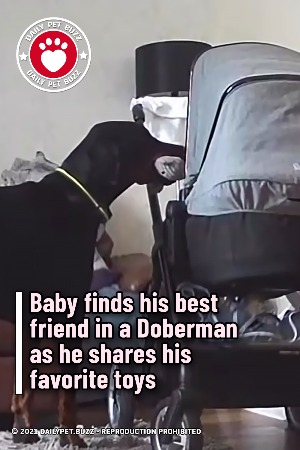 Baby finds his best friend in a Doberman as he shares his favorite toys