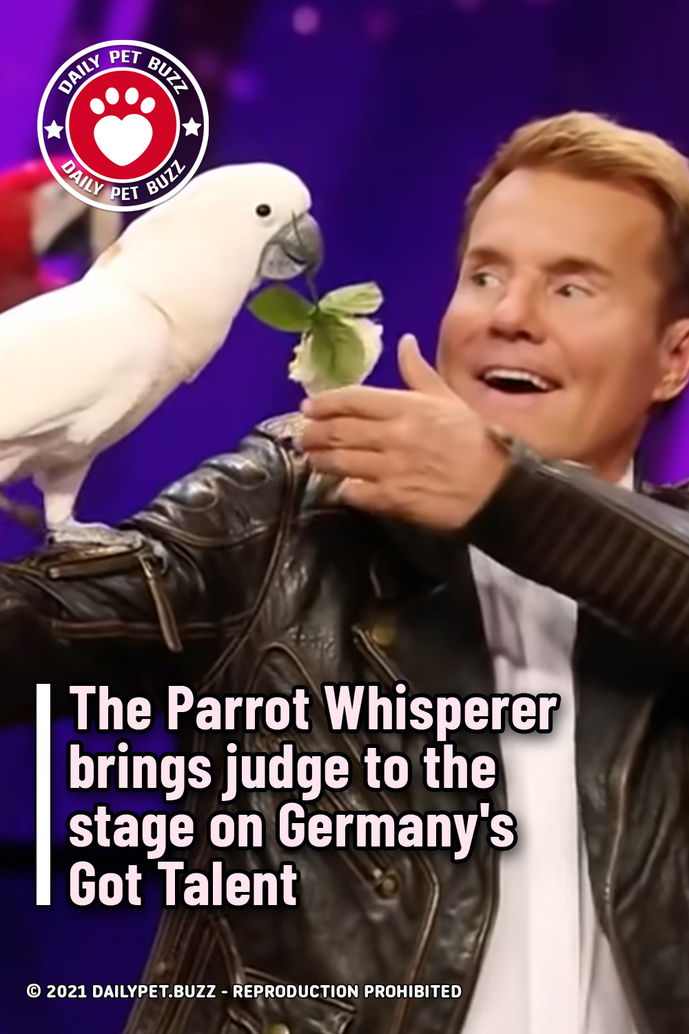 The Parrot Whisperer brings judge to the stage on Germany\'s Got Talent