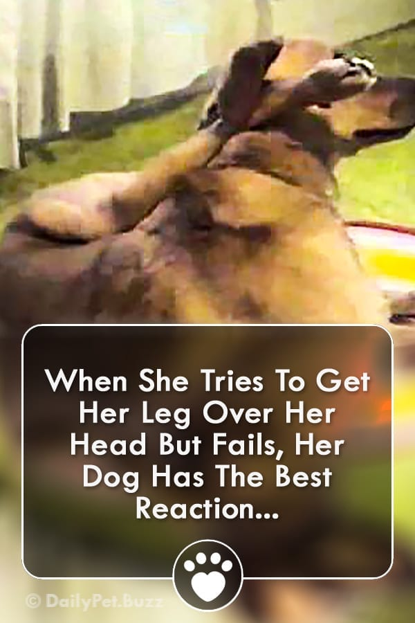 When She Tries To Get Her Leg Over Her Head But Fails, Her Dog Has The Best Reaction...