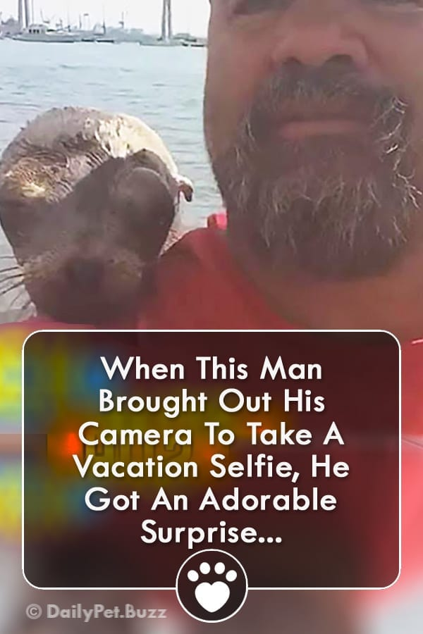 When This Man Brought Out His Camera To Take A Vacation Selfie, He Got An Adorable Surprise...