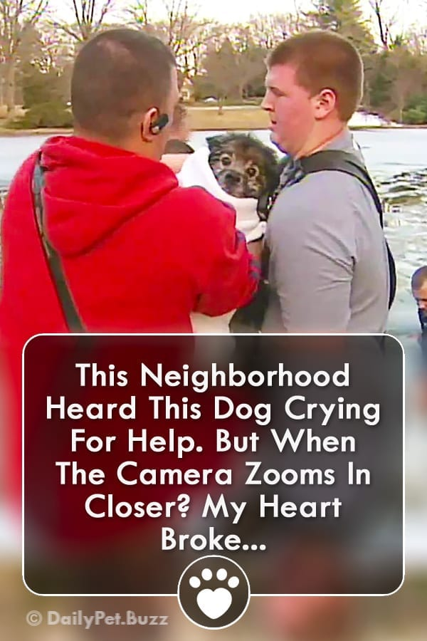 This Neighborhood Heard This Dog Crying For Help. But When The Camera Zooms In Closer? My Heart Broke...