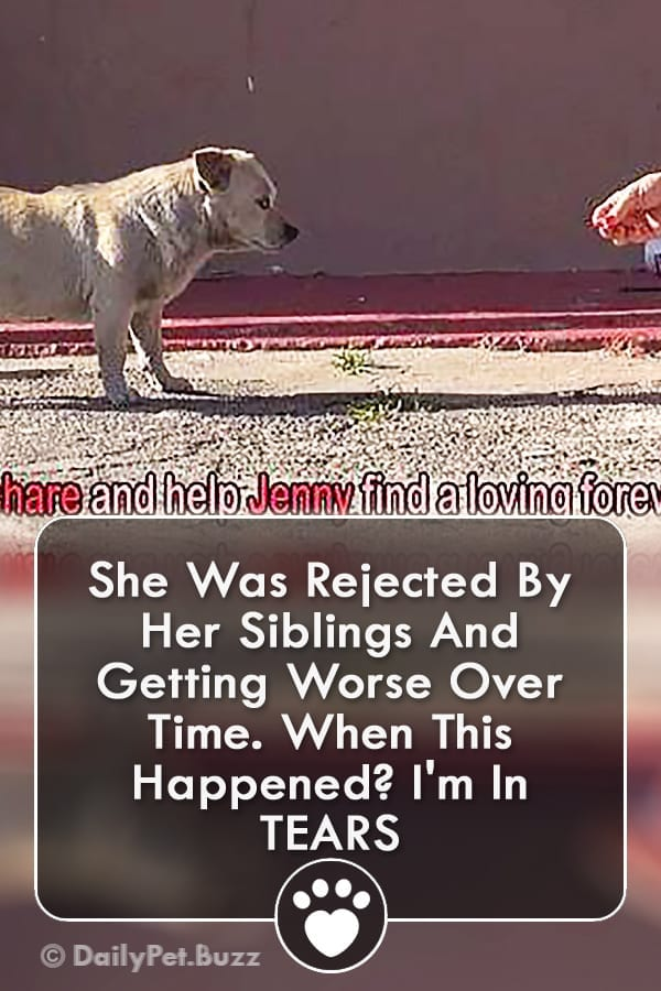 She Was Rejected By Her Siblings And Getting Worse Over Time. When This Happened? I\'m In TEARS