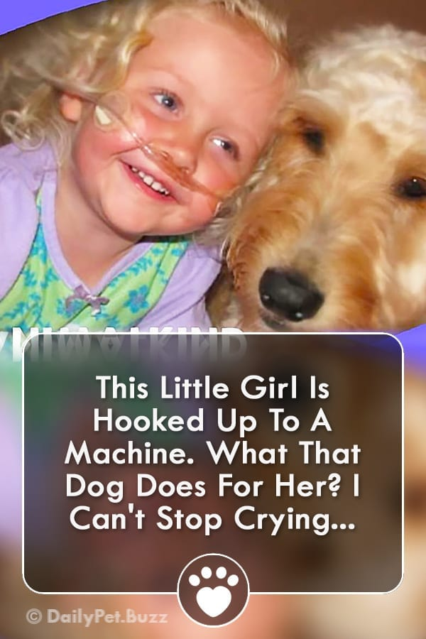 This Little Girl Is Hooked Up To A Machine. What That Dog Does For Her? I Can\'t Stop Crying...