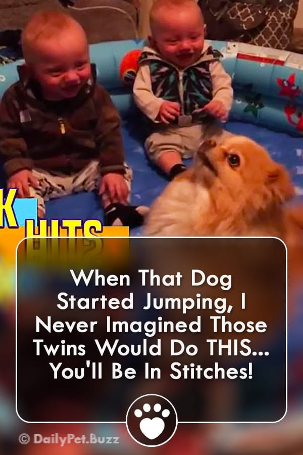 When That Dog Started Jumping, I Never Imagined Those Twins Would Do THIS... You\'ll Be In Stitches!