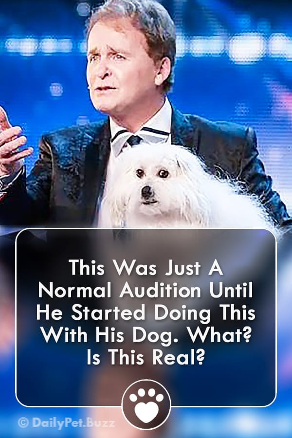 This Was Just A Normal Audition Until He Started Doing This With His Dog. What? Is This Real?