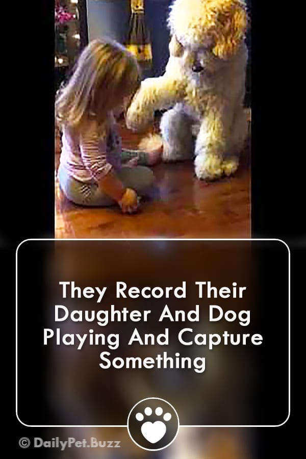 They Record Their Daughter And Dog Playing And Capture Something
