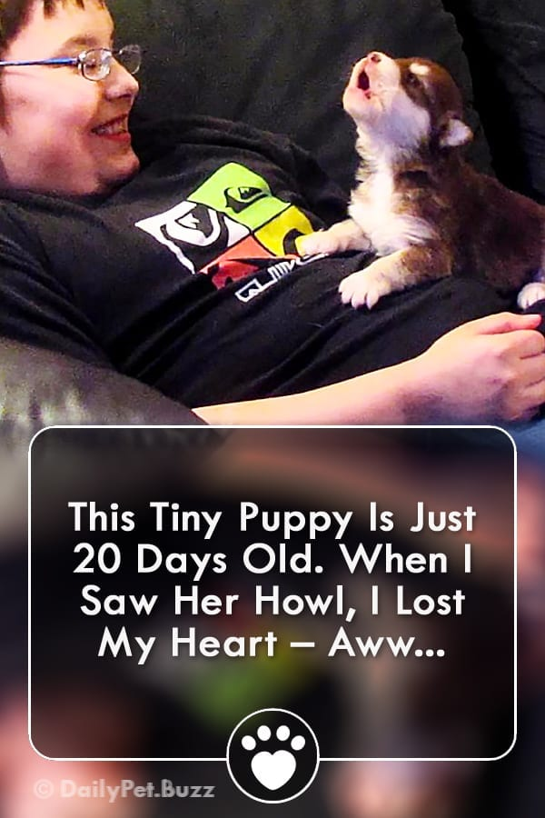 This Tiny Puppy Is Just 20 Days Old. When I Saw Her Howl, I Lost My Heart – Aww...