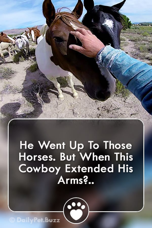 He Went Up To Those Horses. But When This Cowboy Extended His Arms?..