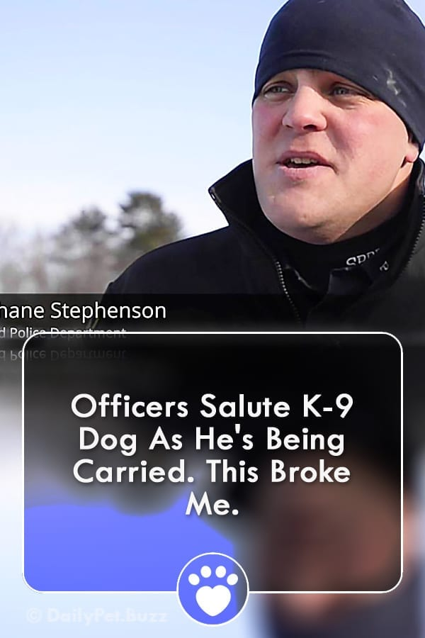 Officers Salute K-9 Dog As He\'s Being Carried. This Broke Me.