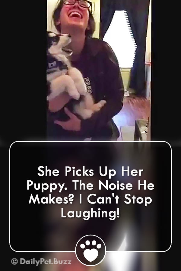 She Picks Up Her Puppy. The Noise He Makes? I Can\'t Stop Laughing!