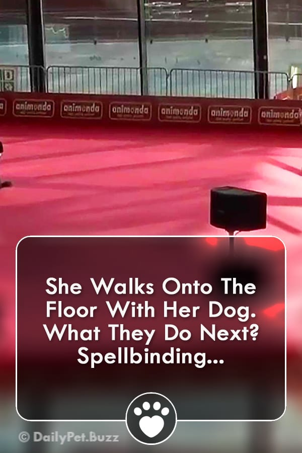 She Walks Onto The Floor With Her Dog. What They Do Next? Spellbinding...