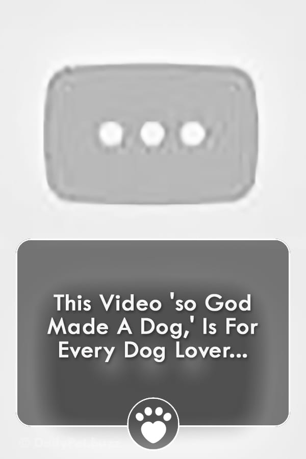 This Video \'so God Made A Dog,\' Is For Every Dog Lover...