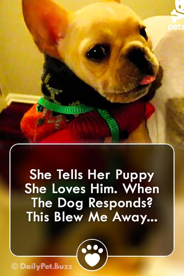 She Tells Her Puppy She Loves Him. When The Dog Responds? This Blew Me Away...