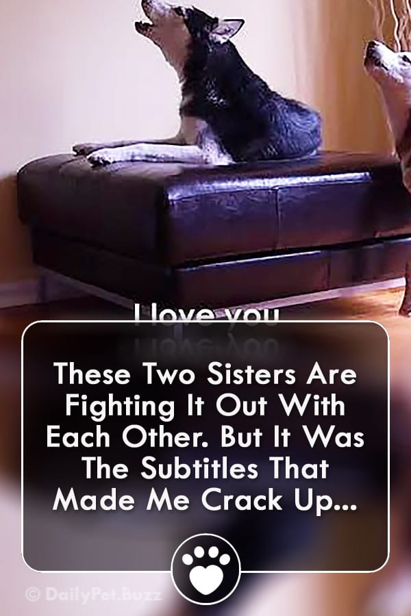 These Two Sisters Are Fighting It Out With Each Other. But It Was The Subtitles That Made Me Crack Up...