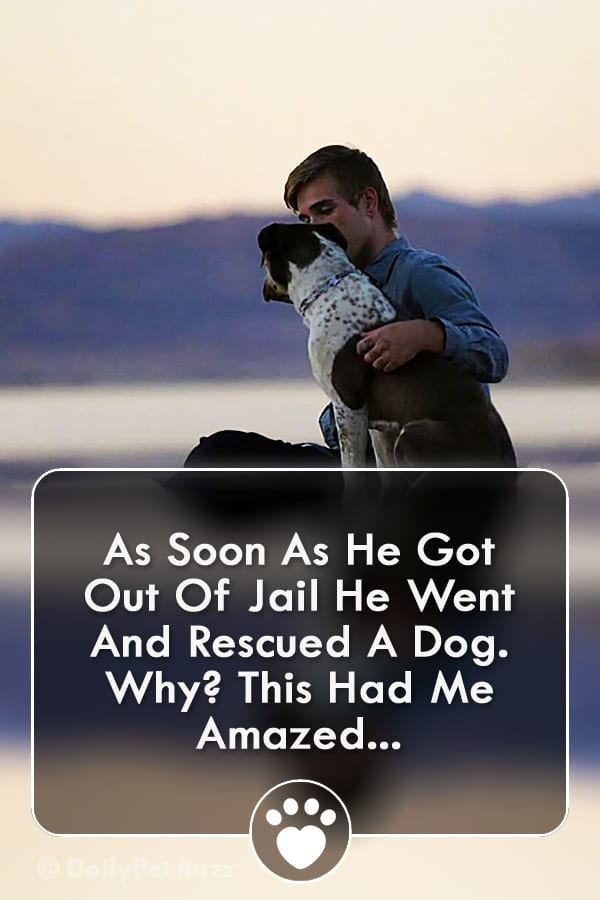 As Soon As He Got Out Of Jail He Went And Rescued A Dog. Why? This Had Me Amazed...