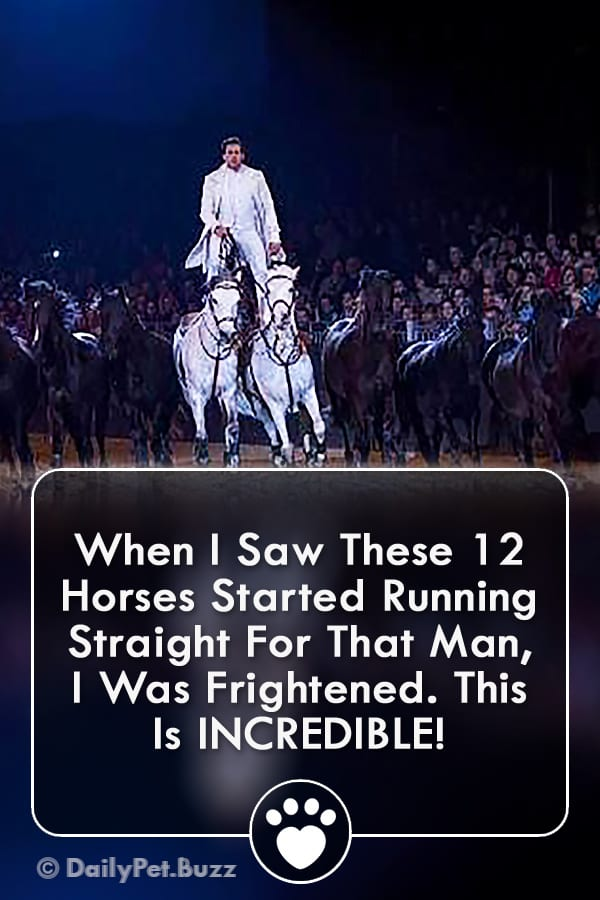 When I Saw These 12 Horses Started Running Straight For That Man, I Was Frightened. This Is INCREDIBLE!