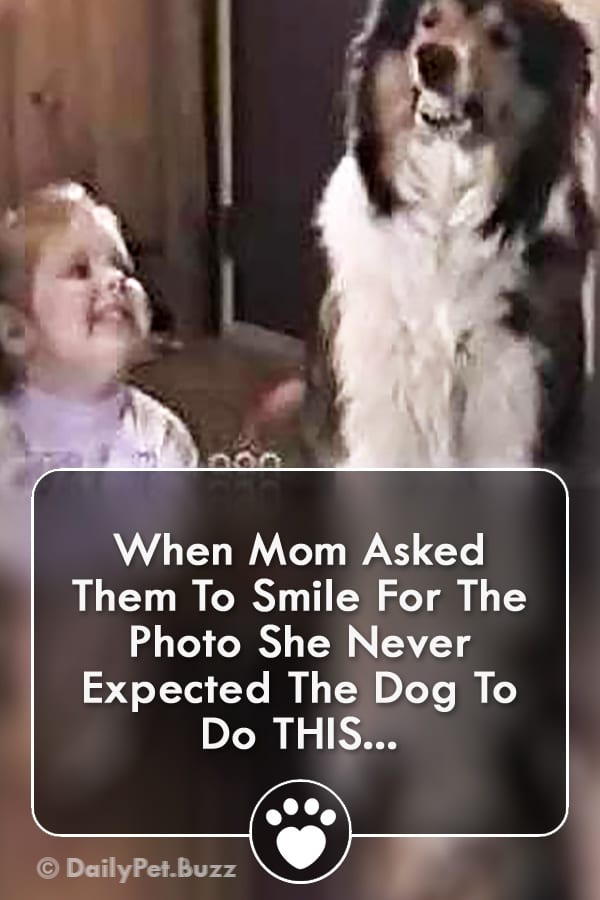 When Mom Asked Them To Smile For The Photo She Never Expected The Dog To Do THIS...